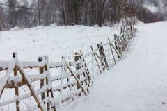 Paesaggio nevoso di inverno Immagini Stock Libere da Diritti
