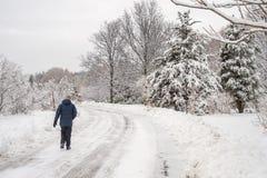Paesaggio nevoso di inverno a giardino botanico di Montreal, Quebec immagini stock