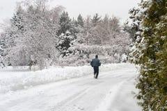 Paesaggio nevoso di inverno a giardino botanico di Montreal, Quebec fotografia stock libera da diritti