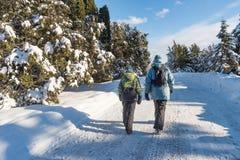 Paesaggio nevoso di inverno a giardino botanico di Montreal, Quebec fotografia stock