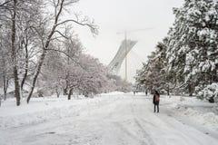 Paesaggio nevoso di inverno a giardino botanico di Montreal, Quebec immagini stock libere da diritti
