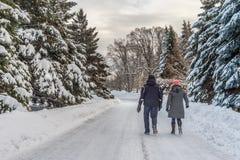 Paesaggio nevoso di inverno a giardino botanico di Montreal, Quebec fotografie stock