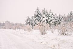 Paesaggio nevoso di inverno a Montreal fotografia stock libera da diritti