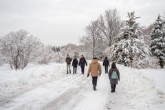 Paesaggio nevoso di inverno a Montreal, Quebec fotografia stock