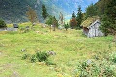 Paesaggio norvegese della foresta Fotografia Stock Libera da Diritti