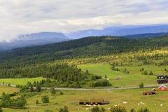 Paesaggio norvegese di mattina Immagini Stock Libere da Diritti