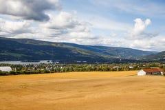 Paesaggio in Norvegia Fotografie Stock