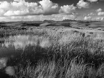 Paesaggio nuvoloso con le colline e un lago in bianco e nero Fotografie Stock Libere da Diritti