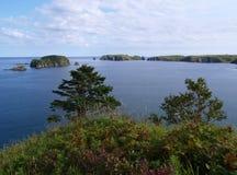 Paesaggio oceanico Fotografia Stock