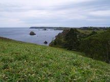 Paesaggio oceanico Immagine Stock