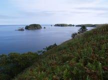 Paesaggio oceanico Fotografie Stock