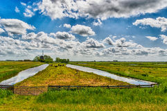 Paesaggio olandese Immagini Stock Libere da Diritti
