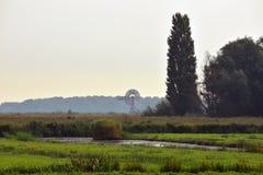 Paesaggio olandese con il mulino a vento Immagini Stock Libere da Diritti