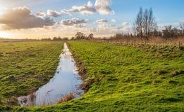 Paesaggio olandese del ploder alla luce solare bassa di pomeriggio fotografie stock