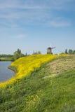 Paesaggio olandese del ploder nella primavera Fotografia Stock Libera da Diritti