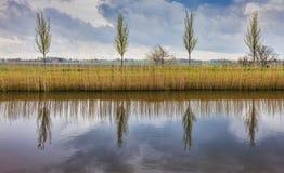 Paesaggio olandese rurale Fotografia Stock Libera da Diritti