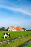 Paesaggio olandese tipico Immagini Stock Libere da Diritti