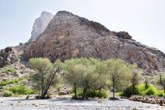 Paesaggio Oman Fotografia Stock Libera da Diritti