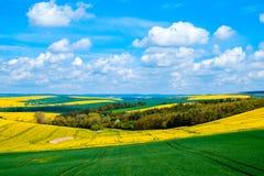 Paesaggio ondulato della molla dei prati in Moravia del sud Fotografia Stock
