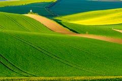 Paesaggio ondulato della molla dei prati in Moravia del sud Fotografia Stock Libera da Diritti