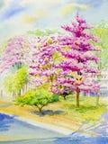 Paesaggio originale dell'acquerello che dipinge colore rosa della ciliegia himalayana selvatica illustrazione vettoriale
