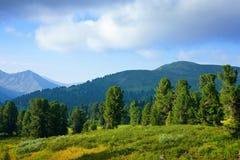 Paesaggio orizzontale delle montagne Fotografia Stock