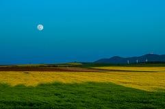 Paesaggio - pali del cielo, del campo e di elettricità fotografia stock