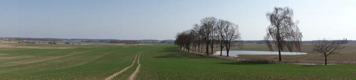 Paesaggio panoramico con una strada alberata a sud di Olsztyn, Polonia Immagini Stock Libere da Diritti