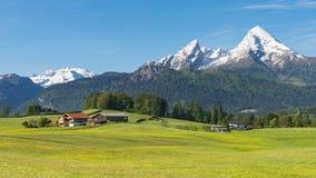 Paesaggio panoramico della molla alpina tradizionale in Berchtesgaden con il supporto di Watzmann ed il prato di fioritura Fotografie Stock