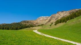 Paesaggio panoramico della natura della strada della montagna Valle di Ridanna, Tirolo del sud, Trentino Alto Adige, Italia Immagine Stock