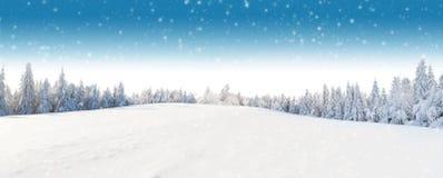 Paesaggio panoramico di inverno con la foresta su fondo Immagini Stock Libere da Diritti