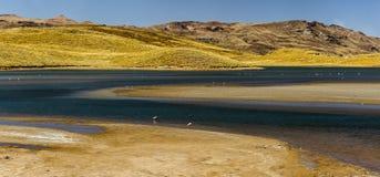 Paesaggio peruviano, Perù Immagini Stock