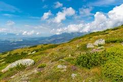 Paesaggio piacevole della montagna in Tatras fotografie stock