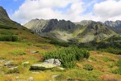 Paesaggio piacevole della montagna in Tatras fotografia stock