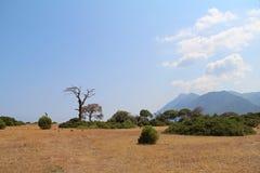 Paesaggio piacevole della Turchia al parco nazionale di Olympus La Turchia Immagini Stock