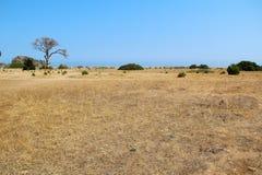 Paesaggio piacevole della Turchia al parco nazionale di Olympus La Turchia Fotografia Stock Libera da Diritti