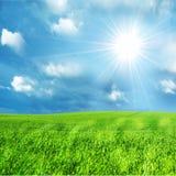 Paesaggio pieno di sole della sorgente Immagine Stock