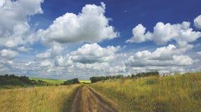 Paesaggio pieno di sole di estate Bella vista delle colline verdi, dei campi e dei pascoli fotografie stock libere da diritti