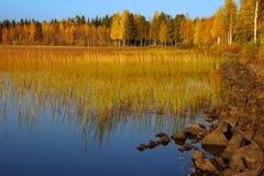 Paesaggio pittoresco di autunno Fotografia Stock Libera da Diritti