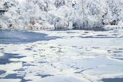 Paesaggio pittoresco di inverno sul fiume di Dnieper, coperto di vista del ghiaccio, della neve e di brina del fiume e del parco  Fotografia Stock