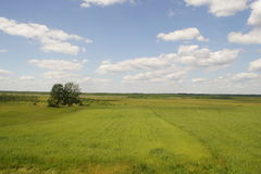Paesaggio polacco Immagine Stock