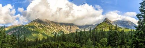 Paesaggio polacco di estate delle montagne di Tatra con cielo blu e le nuvole bianche fotografia stock libera da diritti
