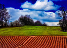 Paesaggio polacco tipico Fotografie Stock