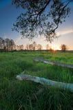 Paesaggio in Polonia Immagine Stock