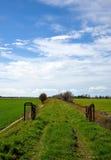 Paesaggio in primavera Immagine Stock Libera da Diritti