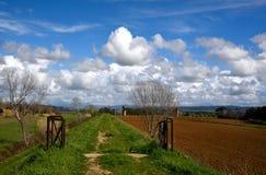 Paesaggio in primavera Immagini Stock