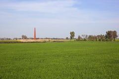 Paesaggio punjabi con la fornace Immagine Stock