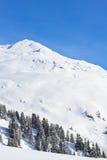 Paesaggio puro di inverno Fotografie Stock