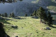 Paesaggio in Pyrenees Immagini Stock