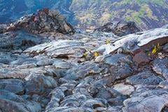 Paesaggio raffreddato fuso della lava Immagine Stock